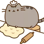 Pusheen matrica 4
