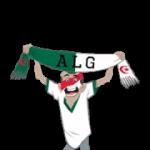 Футбол шарфи (A-F) наклейка 27