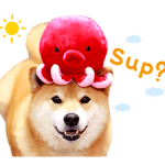 Shiba Maru Stickers 2 4