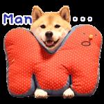 Shiba Maru Stiker 2 5