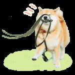 Shiba Maru klistermærker 4
