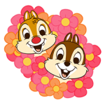 Chip 'n' Dale matricák 5
