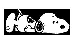 snoopy ਸਟਿੱਕਰ 12