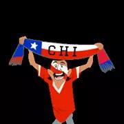 Soccer Scarves (A-F) Sticker 7