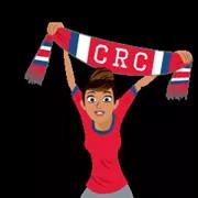 Soccer Scarves (A-F) Sticker 14