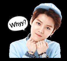 EXO Special Edition Sticker 13