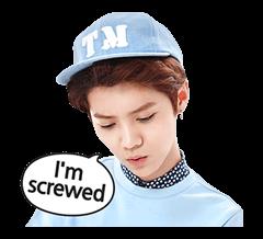 EXO Special Edition Sticker 14