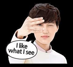 EXO Special Edition Sticker 16