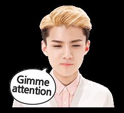 EXO Special Edition Sticker 24