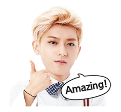 EXO Special Edition Sticker 25