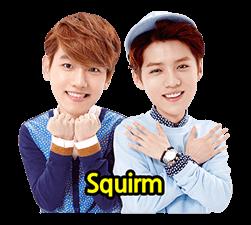 EXO Special Edition Sticker 35
