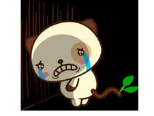 Panda Pas naljepnica 31